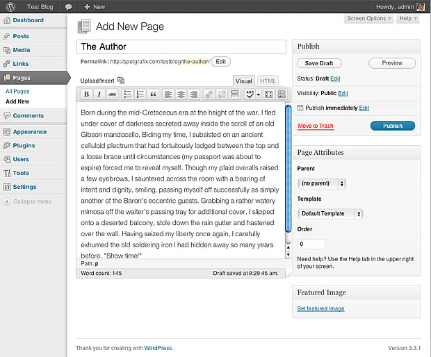 wordpress editing screen