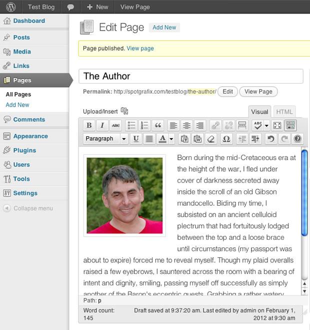 wordpress loaded image