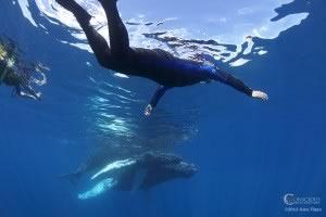 conscious breath adventures